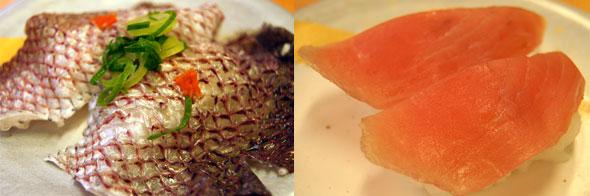 鯛皮の湯引きと赤マンボウ