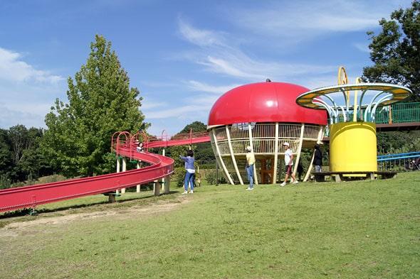 リンゴのローラー滑り台