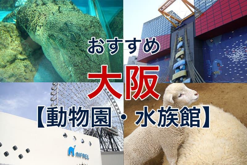おすすめ 大阪 動物園 水族館