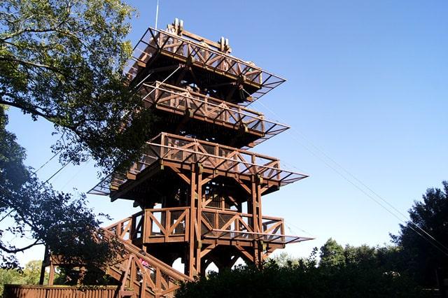展望タワー
