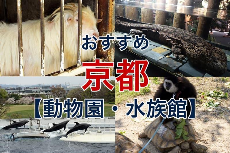 おすすめ 京都 動物園 水族館