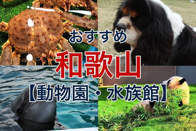 おすすめ 和歌山 動物園 水族館