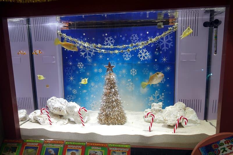 水槽内がクリスマス