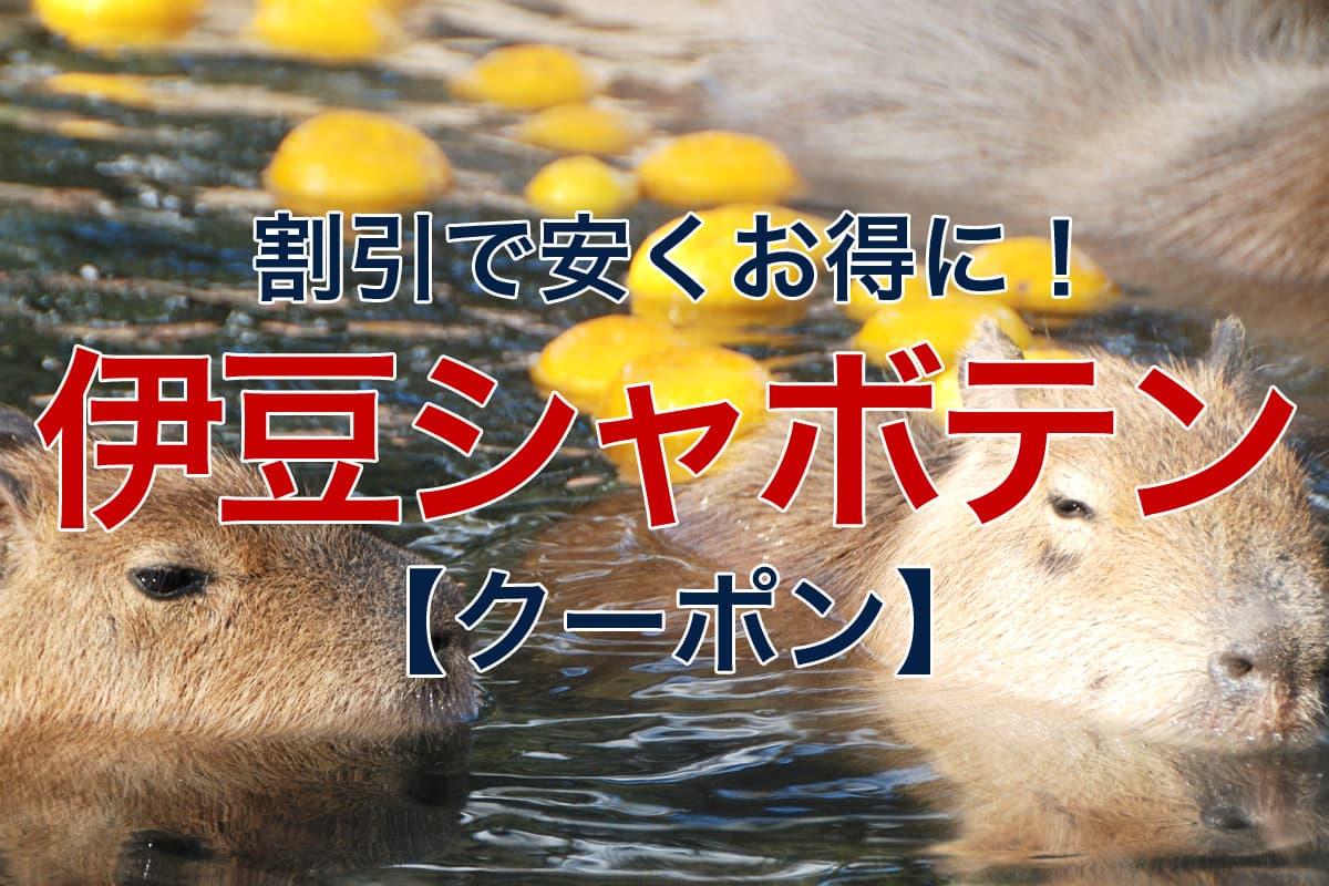 割引で安くお得に 伊豆シャボテン動物公園 クーポン
