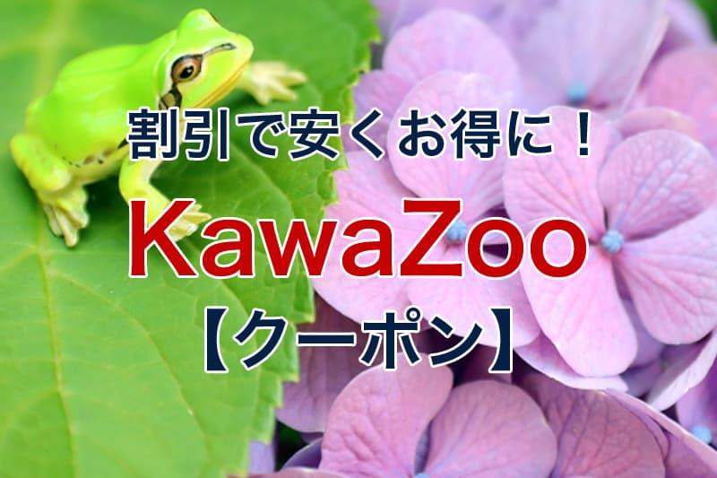 割引で安くお得に KawaZoo クーポン