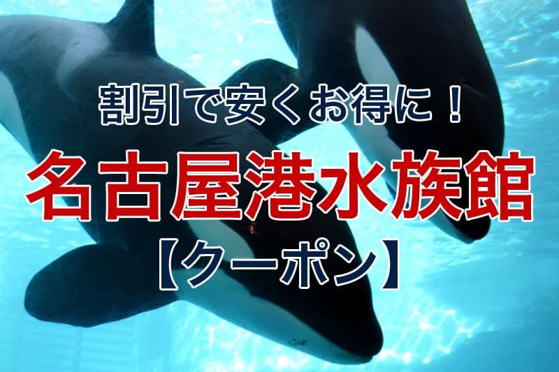 割引で安くお得に 名古屋港水族館 クーポン