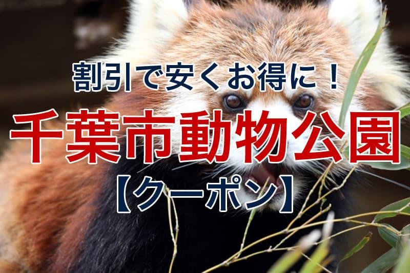 割引で安くお得に 千葉市動物公園 クーポン