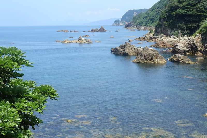 リアス式海岸の奇岩
