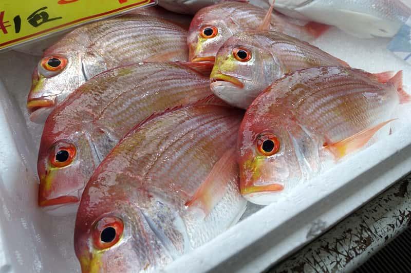 津居山港漁協フィッシャーマンズビレッジ