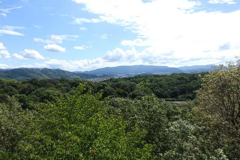 錦織公園の展望台から見た景色