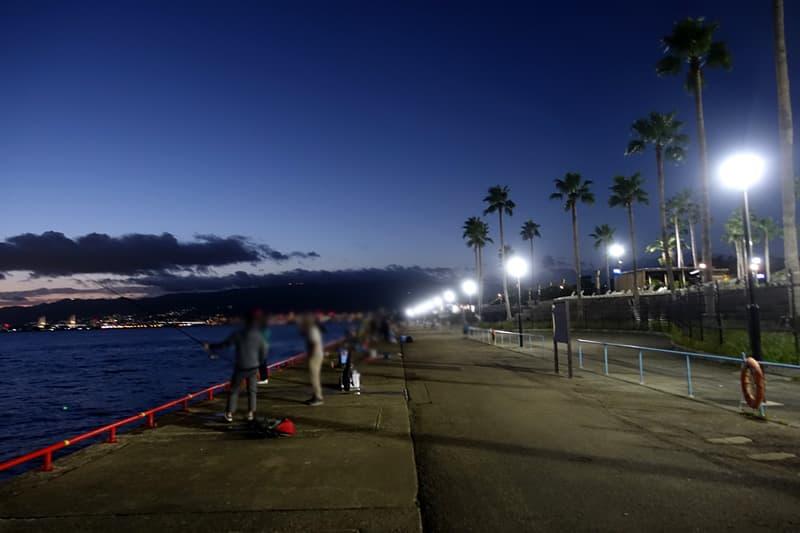 鳴尾浜臨海公園海づり広場の夜釣り
