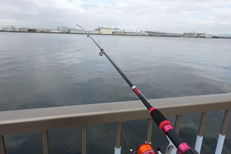 海釣りテラスで釣り