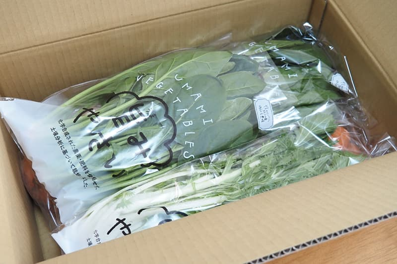 野菜の梱包