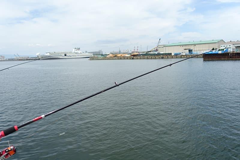 大阪のなぎさ公園で釣り