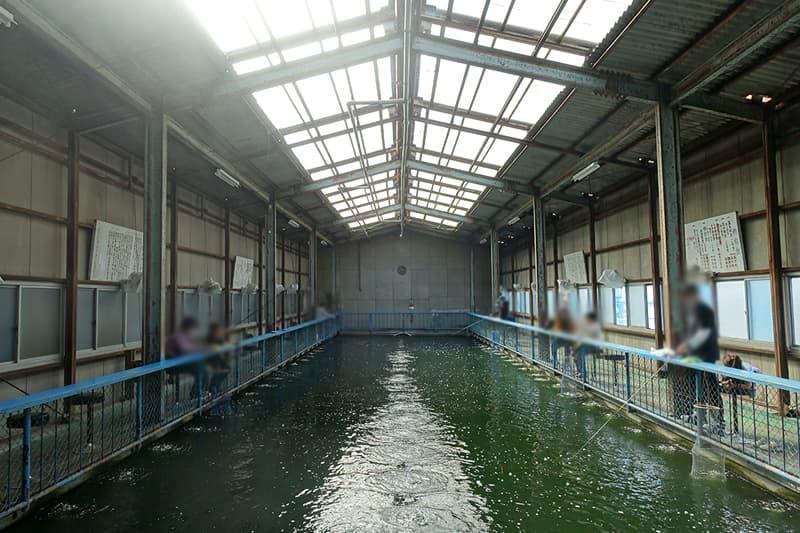 東大阪釣堀センターと釣り堀