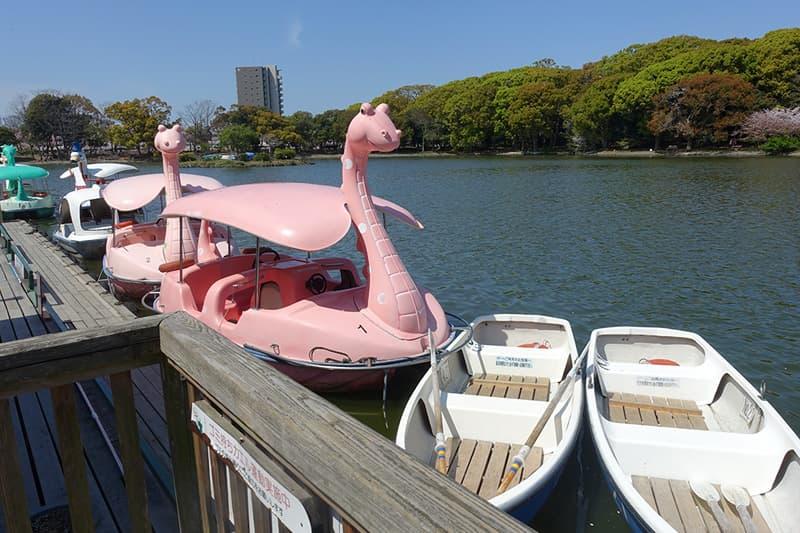 兵庫県立明石公園のボート