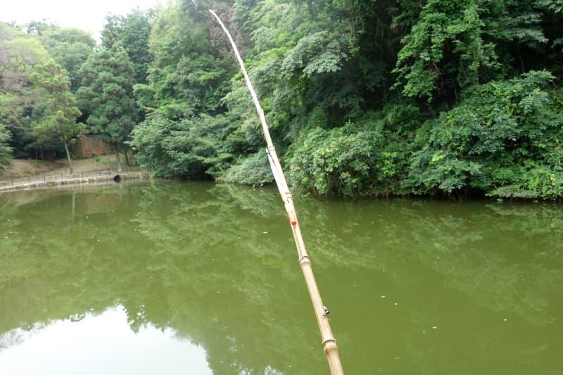 南楽園の釣り堀