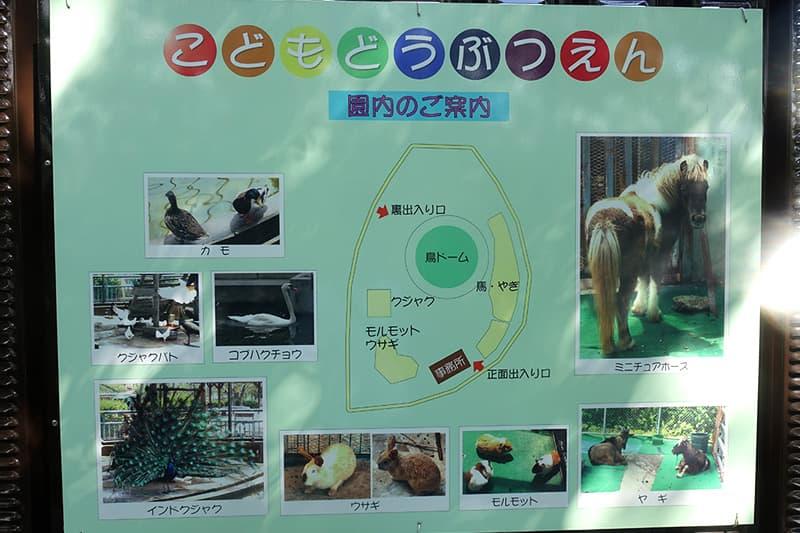 こども動物園のマップ