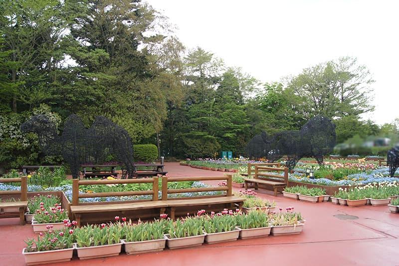 富士サファリパークの園内