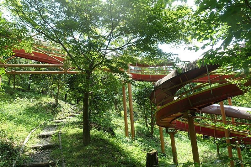 森の滑り台