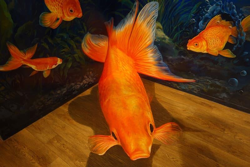 金魚のトリックアート