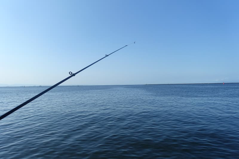 尼崎市立魚つり公園で釣り